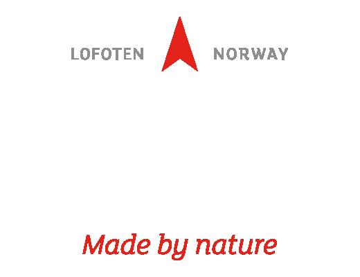 Lofoten Water - logo